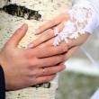 Hands of groom and bride — Photo #6146799