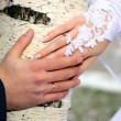 Stock Photo: Hands of groom and bride