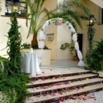 Wedding Path Rose Petals — Stock Photo