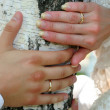 Stock Photo: Hands of groom and bride with wedding rings