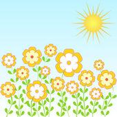 летние цветы — Стоковое фото