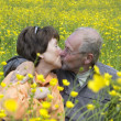 Kissing In The Field — Stock Photo