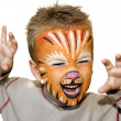 Angry lion — Stock Photo