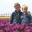 Boys Between Tulips — Stock Photo