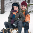 Boys On A Sled — Stock Photo