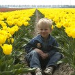 Boy Between Tulips — Stock Photo