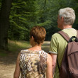 Royalty-Free Stock Photo: Senior couple hiking -2