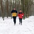 Stock Photo: Running In The Snow