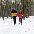 Running In The Snow — Stock Photo #5919052
