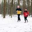 Running In The Snow — Stock Photo #5919056