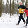 Running In The Snow — Stock Photo #5919060