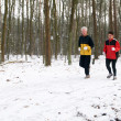 Running In The Snow — Stock Photo #5919061