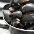 Dutch Mussels — Stock Photo #5919402