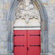 Royalty-Free Stock Photo: Old Cathedral Door