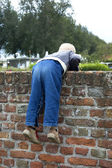 Boy On A Wall — Stock Photo
