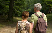 Senior couple hiking -2 — Stock Photo
