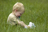 Little boy in the grass — Stock Photo