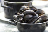 Dutch Mussels — 图库照片