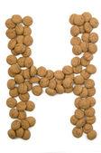 Ginger Nut Alphabet H — Stock Photo