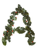 Holly With Berry Letter A — Stockfoto