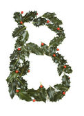 Holly With Berry Letter B — Stock Photo
