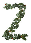 Holly With Berry Letter Z — Stock Photo