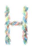 Paperclip Alphabet Letter H — Foto de Stock