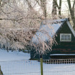 Stock Photo: Winter In Holland