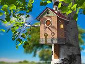 Eco-friendly life — Stock Photo
