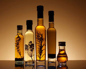 Collection of bottles of olive oil. — Stock Photo