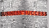 Business words related with words Business and Success — Stock Photo