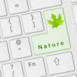 Royalty-Free Stock Photo: Computer keyboard with special Nature key
