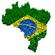 Brazilian flag mounted with blocks over the country boundary — Stockfoto