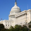 Royalty-Free Stock Photo: US Capitol
