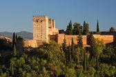 Alhambra — Zdjęcie stockowe