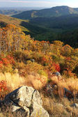 Shenandoah National park — Stock Photo