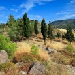 Colorful greek landscape — Stock Photo