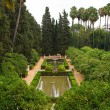 Stock Photo: Garden in Alcazar Palace
