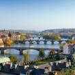 Prague Bridges — Stock Photo #5952969