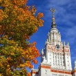 Royalty-Free Stock Photo: Moscow State University