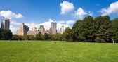Central park, nueva yor — Foto de Stock
