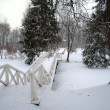 Park after snowstorm — Stock Photo #5969123