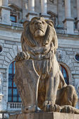 Lion statue in Vienna — Stock Photo