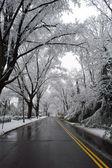 Invierno en washington dc, — Foto de Stock