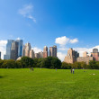 Central Park — Stock Photo #6008508