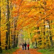 Family walking through autumn park — Stock Photo