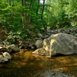 Wood river in Shenandoah National park — Stock Photo