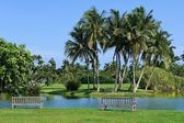 Tropical botanic garden — Stock Photo