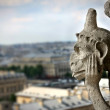 Chimera on Notre Dame Cathedral — Stock Photo