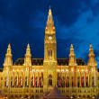 Town hall in Vienna - Stock Photo